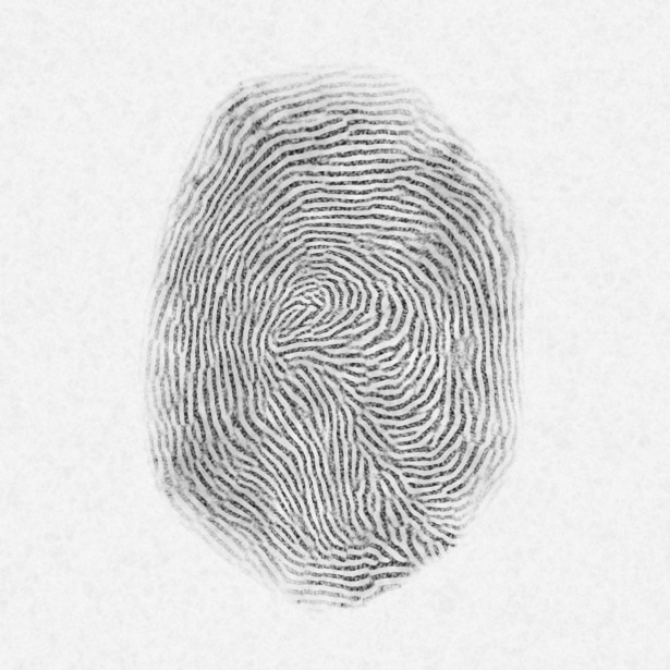 fingerprint for theft